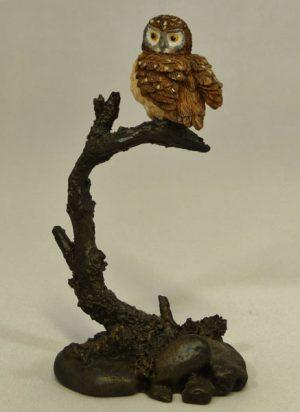 Little Owl by Bowbrook Studios