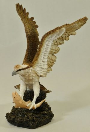 Osprey by Bowbrook Studios