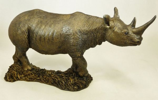 Rhino by Bowbrook Studios