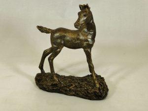 Foal by Bowbrook Studios